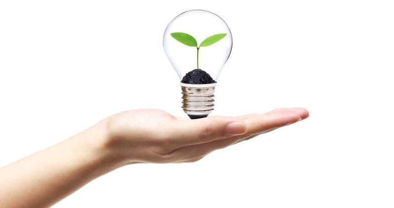 hand holding light bulb green energy 800x423 - Four Energy Efficient Home Improvements To Modernize Your Home